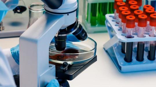 trabajar en laboratorio clínico
