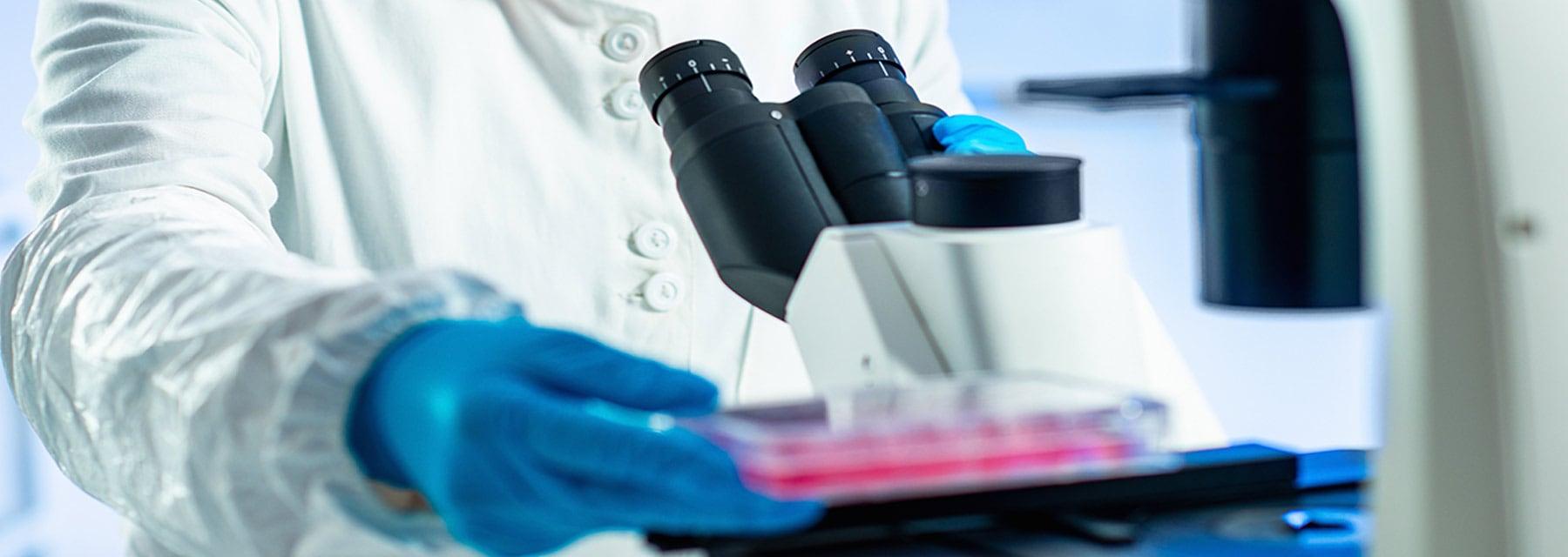 asignaturas de Biología Molecular